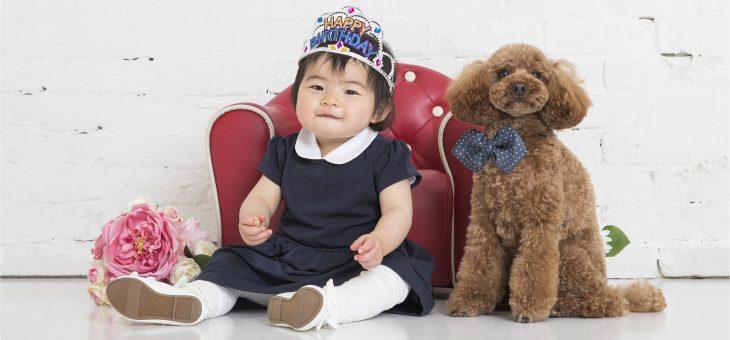 ペットと一緒に1歳誕生日と初節句を祝う
