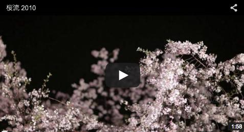 桜流(さくらながし)2010