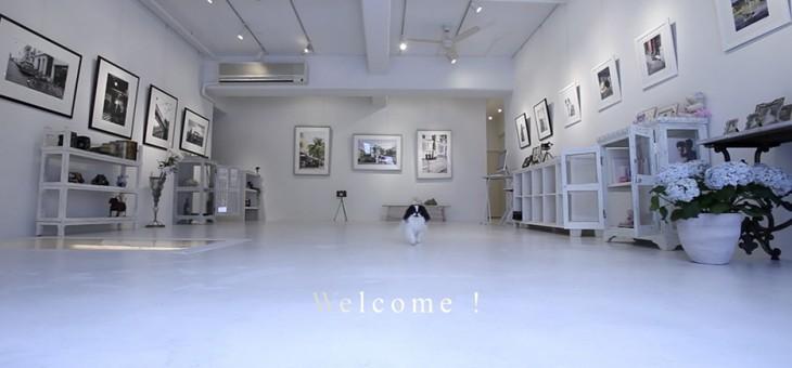 ギャラリーの紹介ビデオ