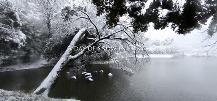 """雪の日 """" A day of snow in Tokyo """""""
